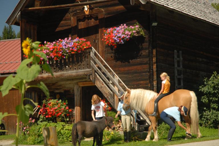 Pferd und Hof