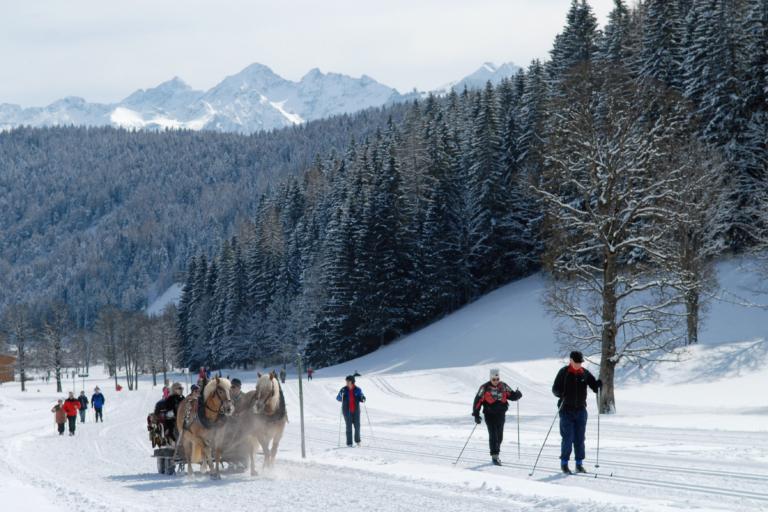 Winterurlaub Pferdeschlittenfahrten