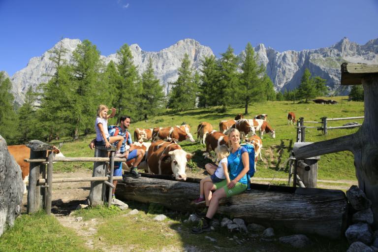 Wanderregion Ramsau am Dachstein - Walcheralm