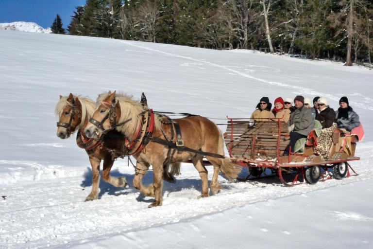 Pferdeschlittenfahrten im Winterurlaub